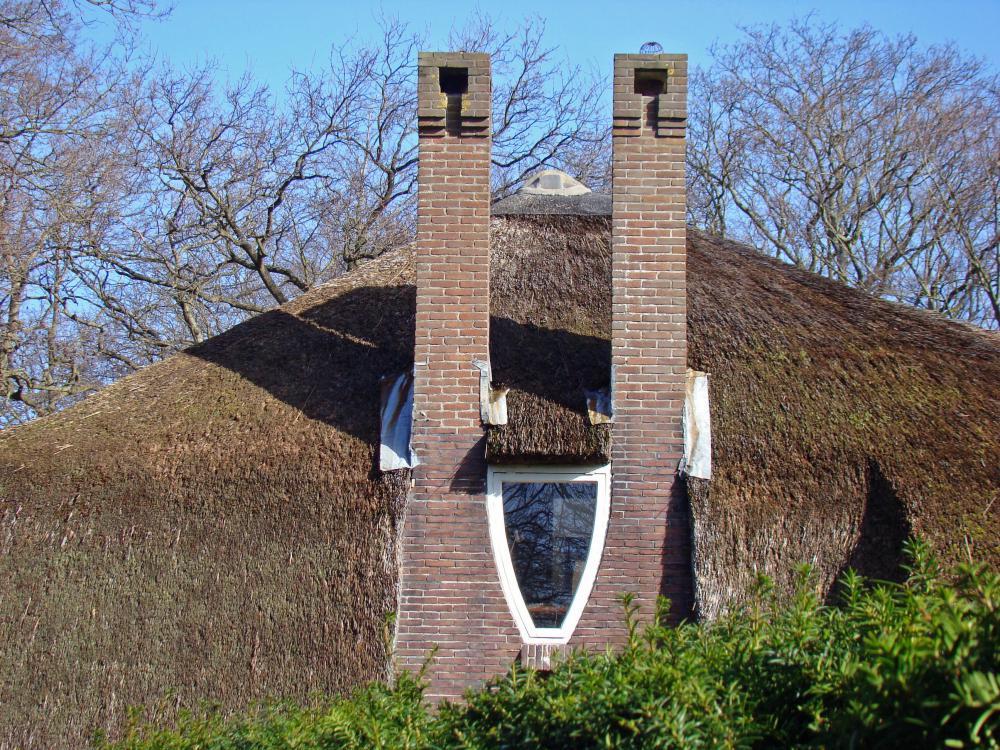 Rondleiding Park Meerwijk